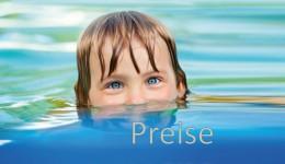 Kategorie_Preise_klein